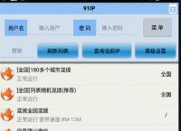 91加速器_单窗口单IP_游戏代理IP_防封IP_手机APK